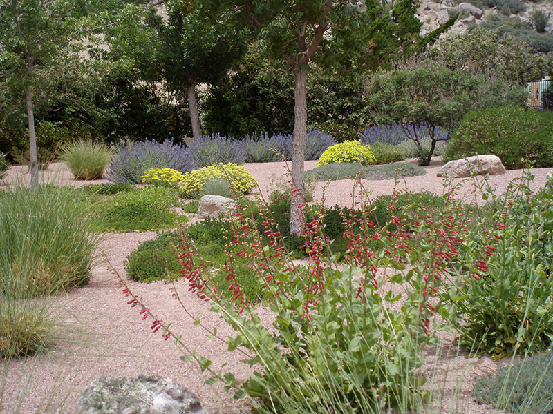 Landscaping Rock Albuquerque : Landscapes waterwise incorporated