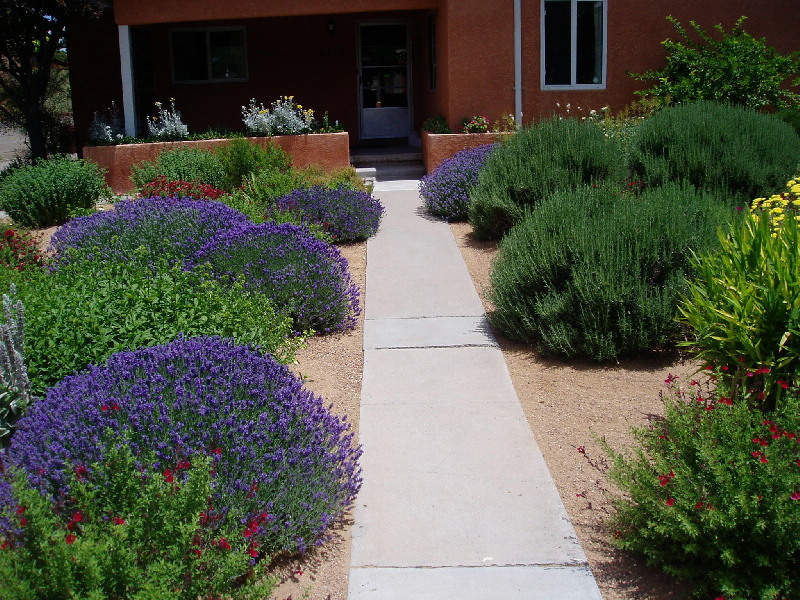 Landscapes WaterWise Landscapes Incorporated