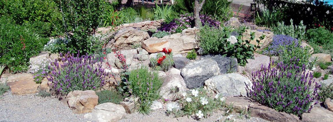 Landscapes Hardscapes Plants Rock Gardens ...